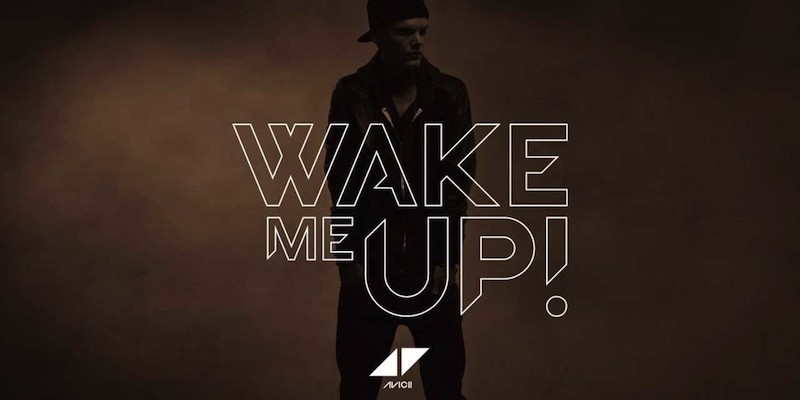 wake me up video meaning